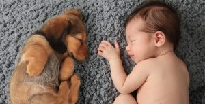 pup and baby sleeping